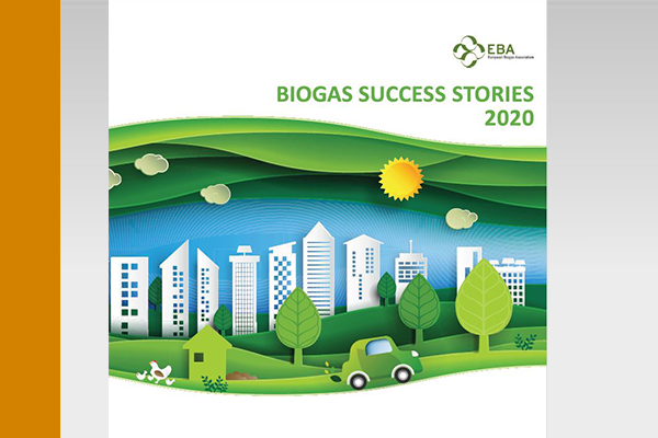 AWITE Bioenergie Biogas Success Stories 2020