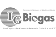 Logo IG Biogas